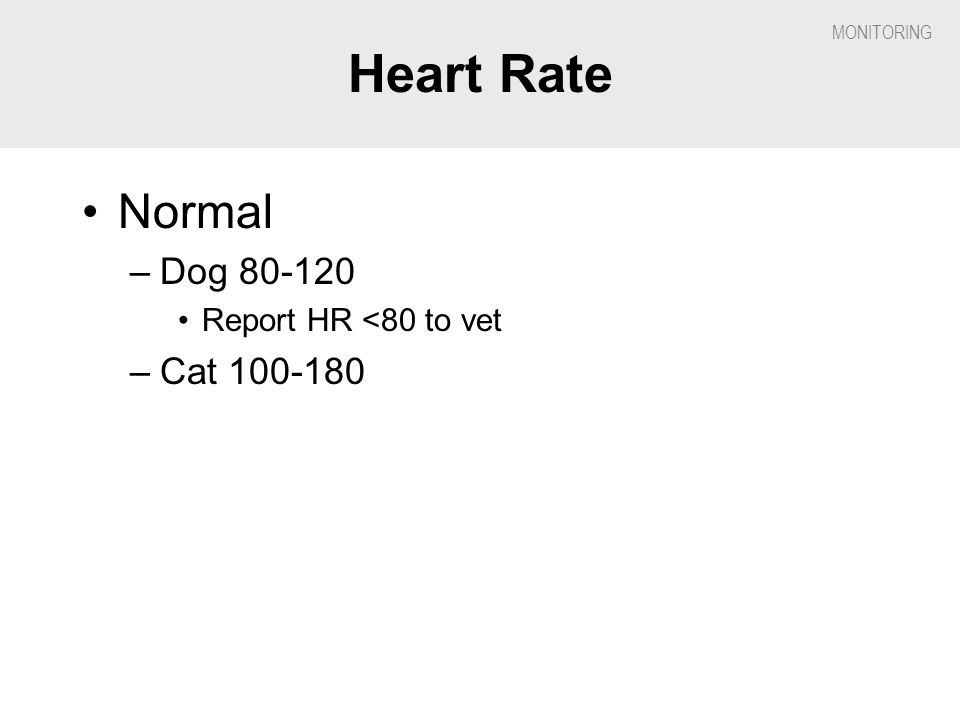 Heart Rate Normal Dog 80-120 Report HR <80 to vet Cat 100-180