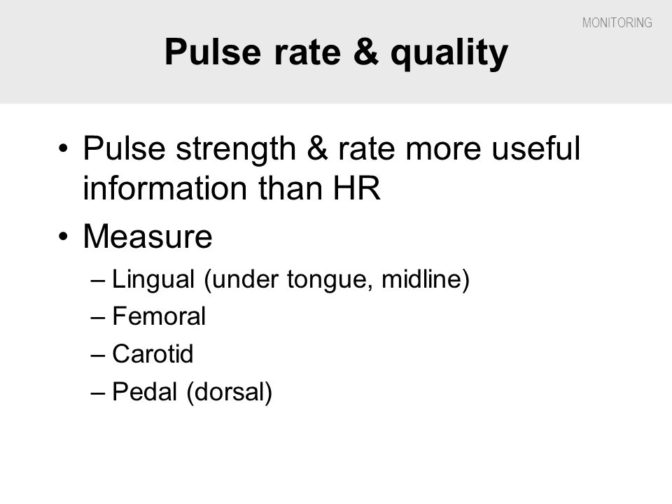 Pulse rate & quality Pulse strength & rate more useful information than HR. Measure. Lingual (under tongue, midline)