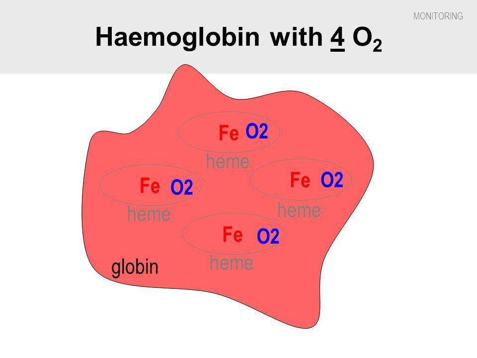 Haemoglobin with 4 O2 Fe O2 heme Fe O2 Fe O2 heme heme Fe O2 heme