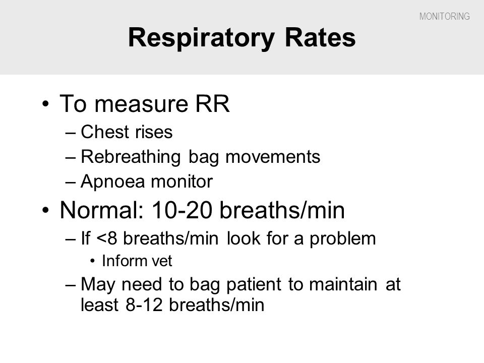 Respiratory Rates To measure RR Normal: 10-20 breaths/min Chest rises