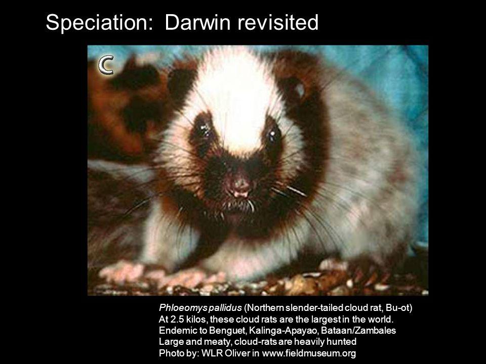 Speciation: Darwin revisited