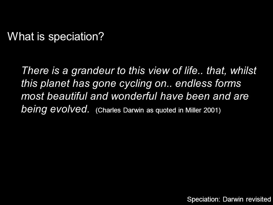 What is speciation