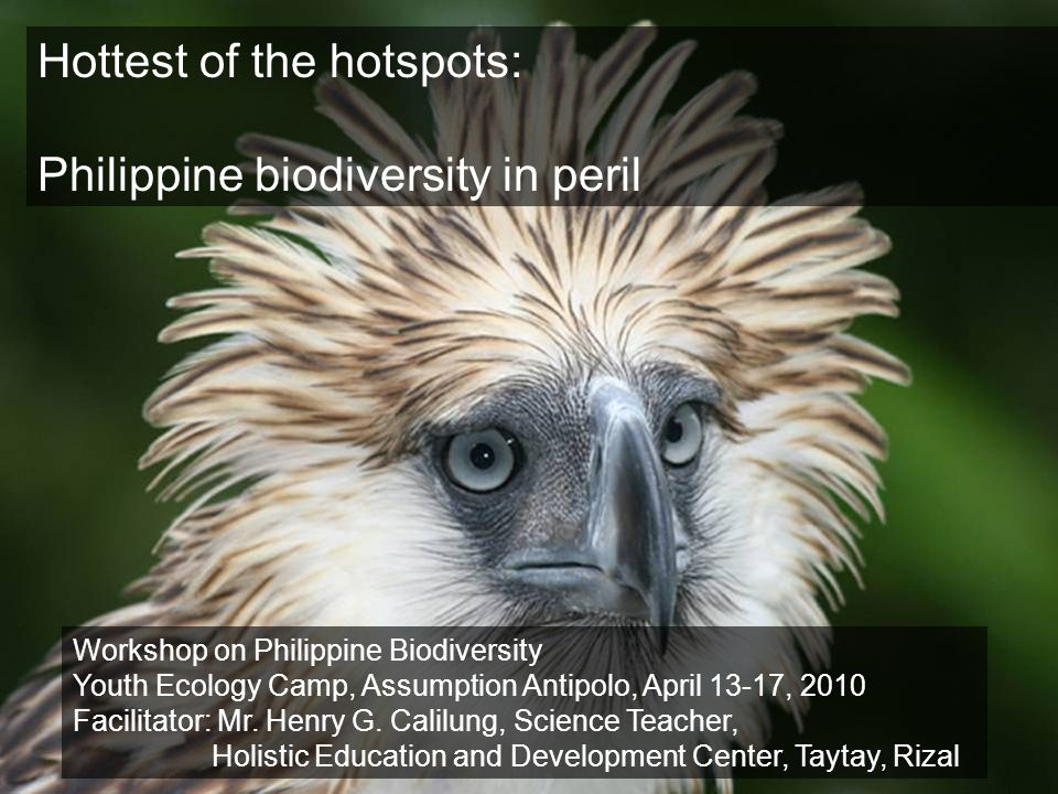 Hottest of the hotspots: Philippine biodiversity in peril