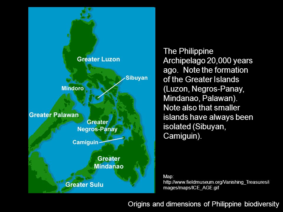 The Philippine Archipelago 20,000 years ago