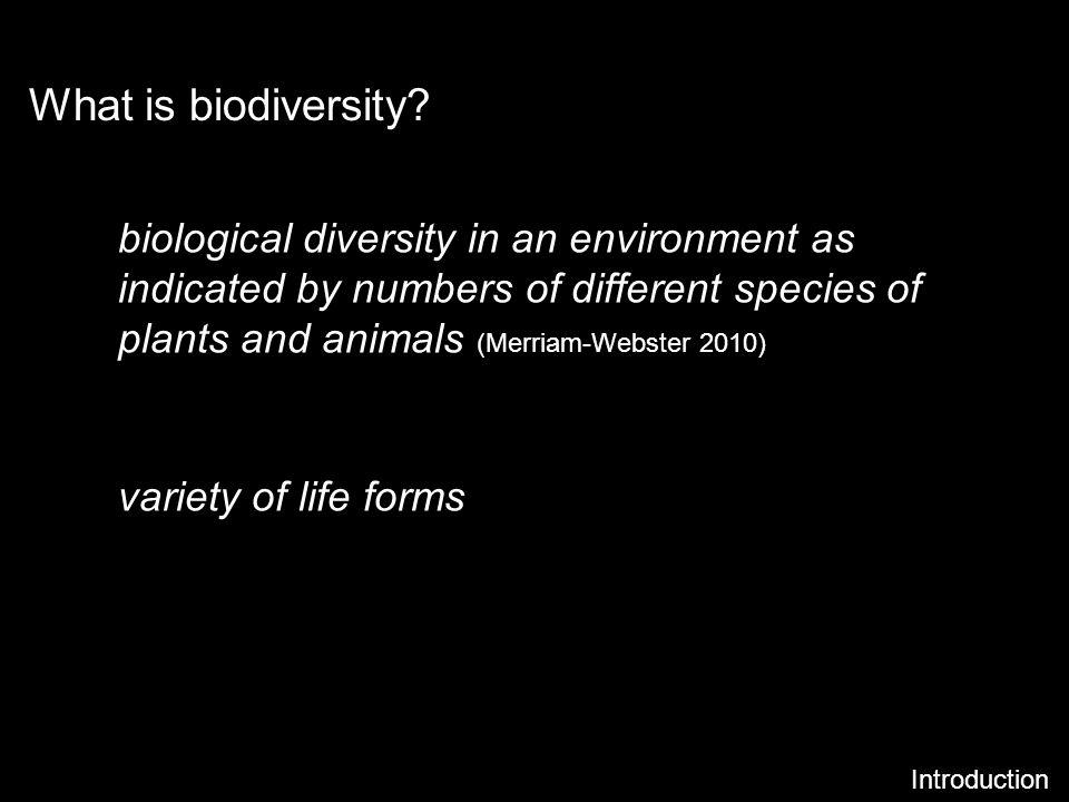 What is biodiversity