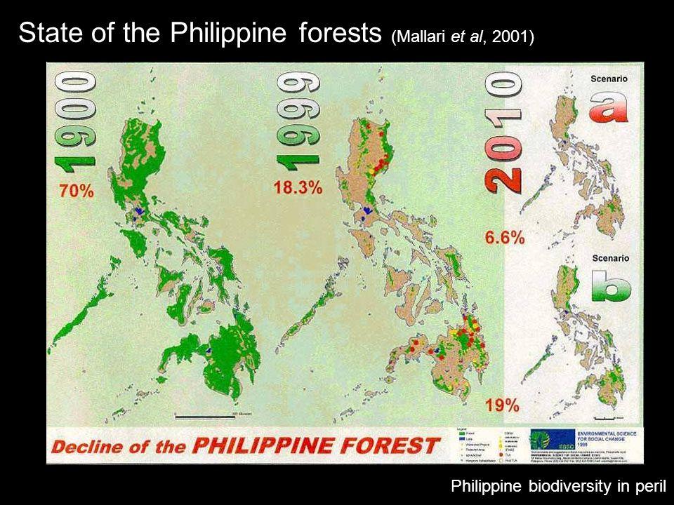 State of the Philippine forests (Mallari et al, 2001)