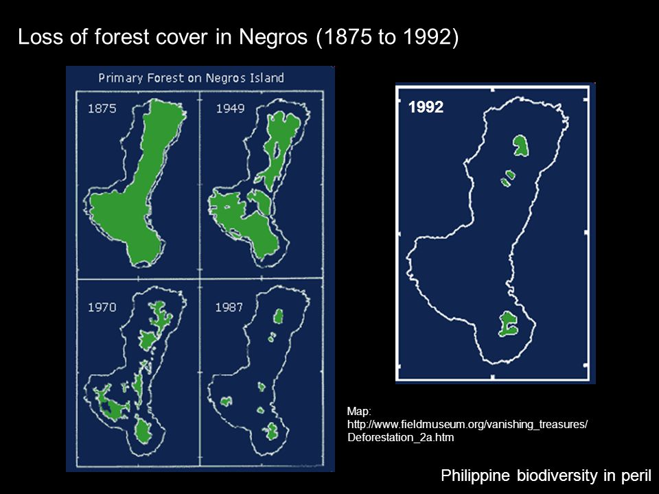Loss of forest cover in Negros (1875 to 1992)