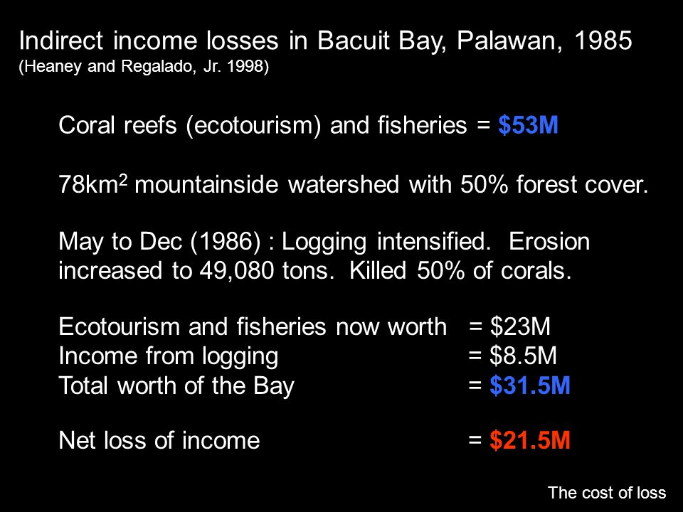 Indirect income losses in Bacuit Bay, Palawan, 1985