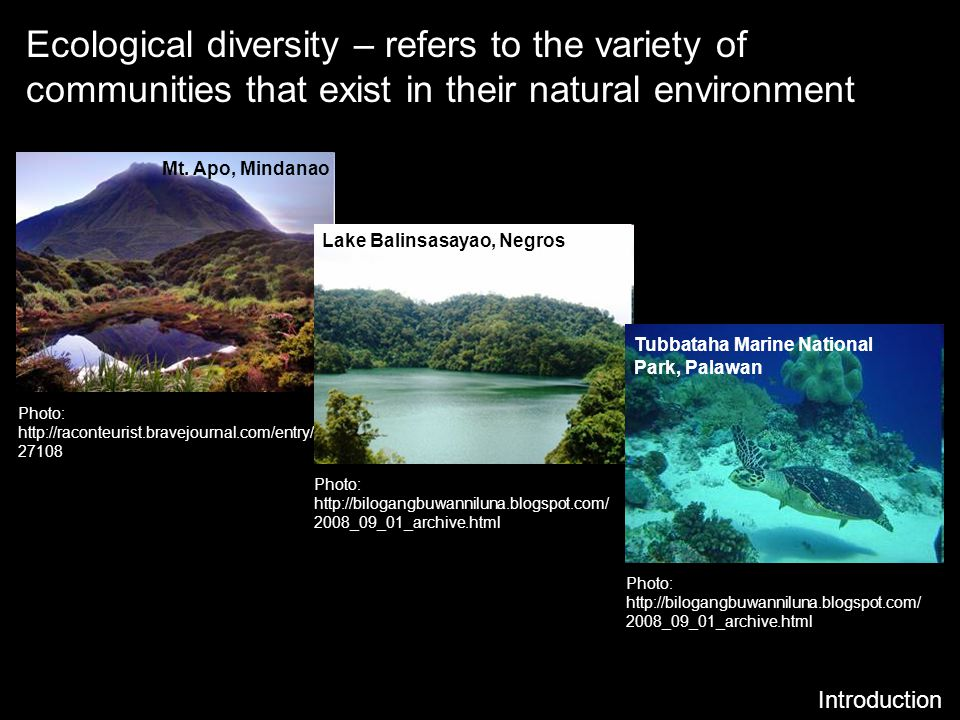 Ecological diversity – refers to the variety of communities that exist in their natural environment