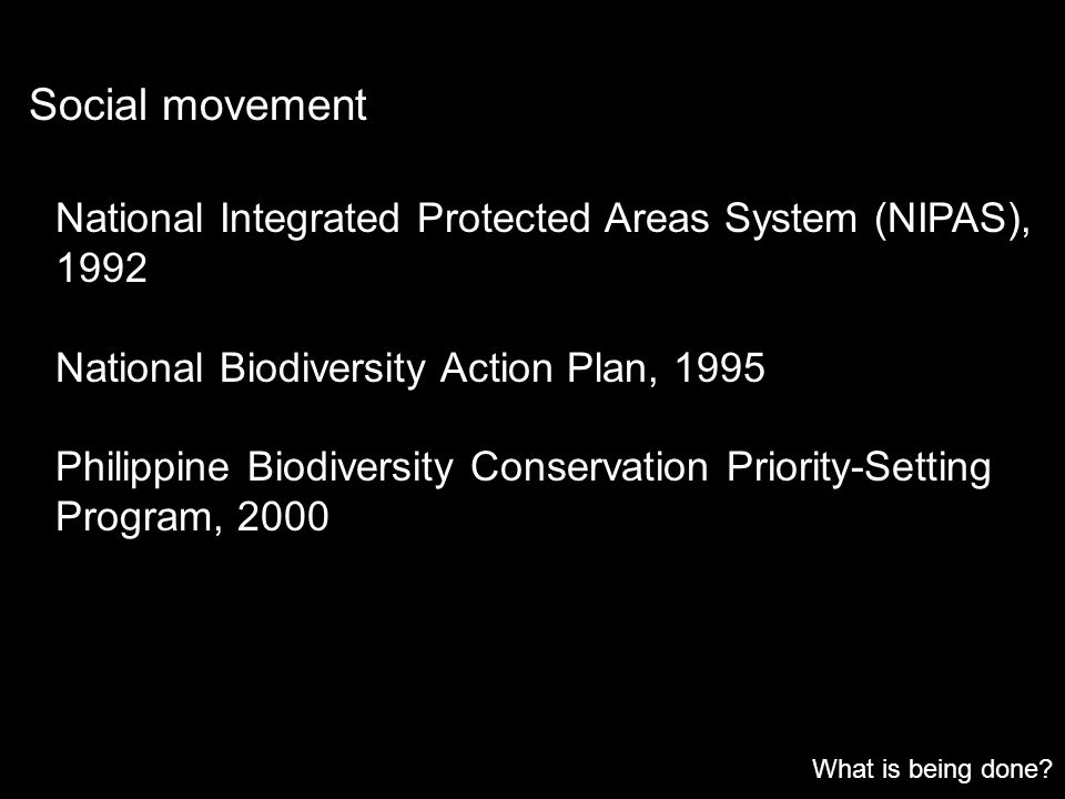 Social movement National Integrated Protected Areas System (NIPAS), 1992. National Biodiversity Action Plan, 1995.
