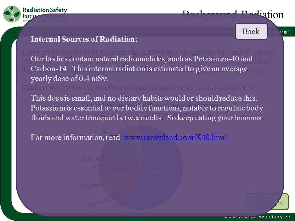 Background Radiation Back Internal Sources of Radiation: