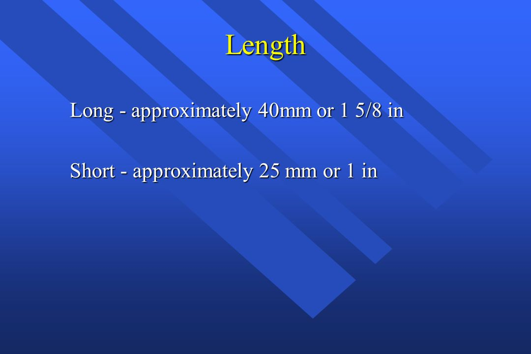 Length Long - approximately 40mm or 1 5/8 in