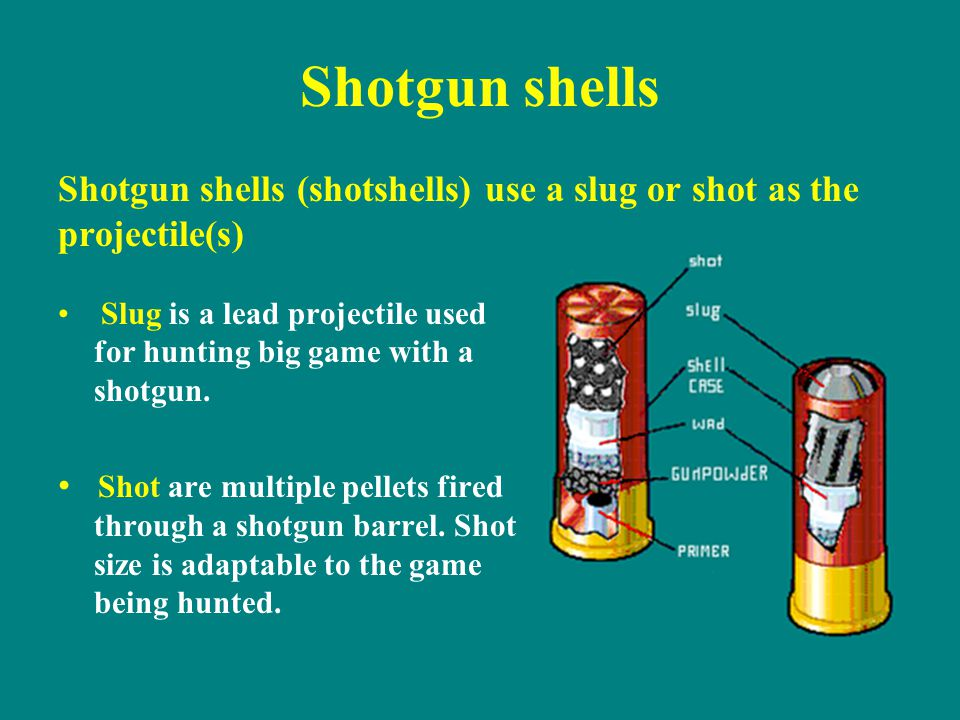 Shotgun shells Shotgun shells (shotshells) use a slug or shot as the projectile(s)