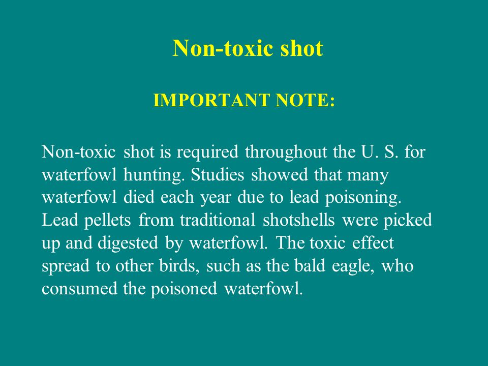 Non-toxic shot IMPORTANT NOTE: