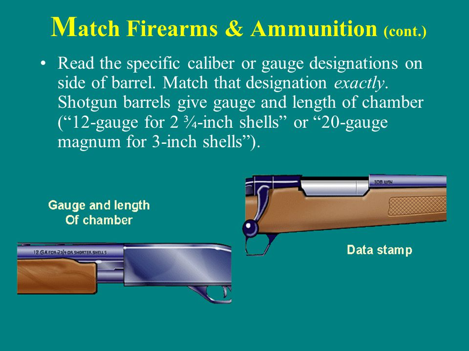 Match Firearms & Ammunition (cont.)