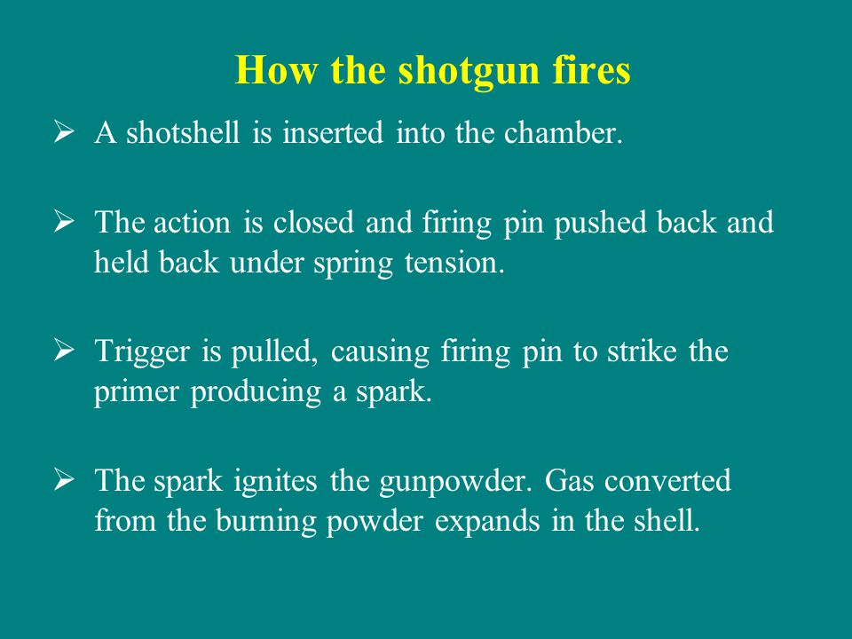 How the shotgun fires A shotshell is inserted into the chamber.