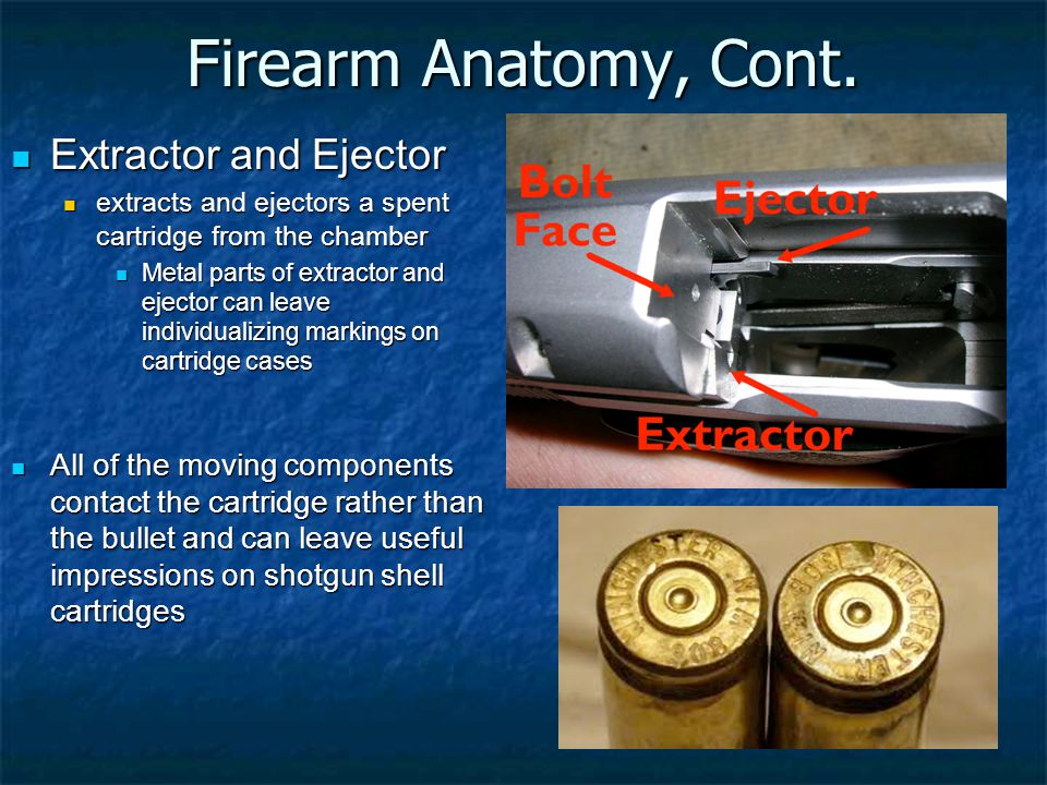 Firearm Anatomy, Cont. Extractor and Ejector