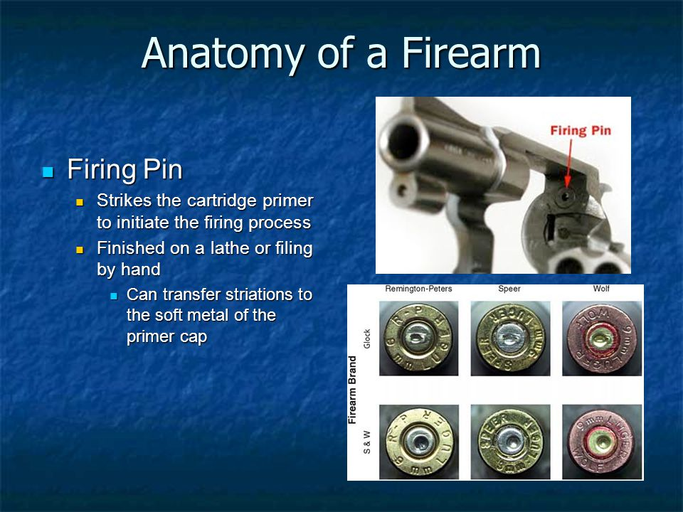 Anatomy of a Firearm Firing Pin