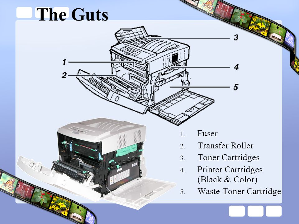 The Guts Fuser Transfer Roller Toner Cartridges