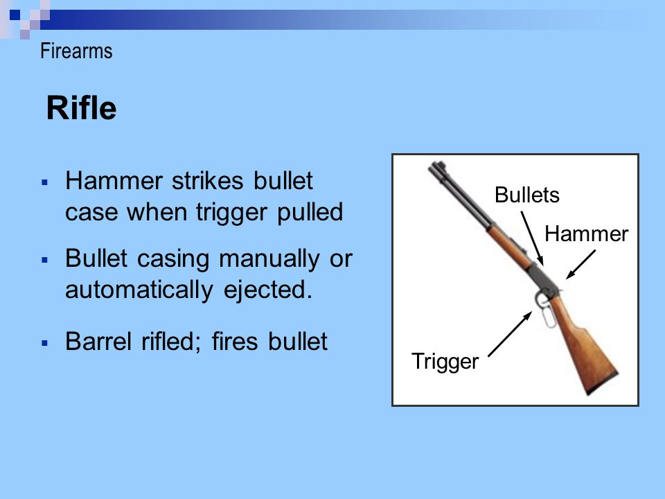 Rifle Hammer strikes bullet case when trigger pulled