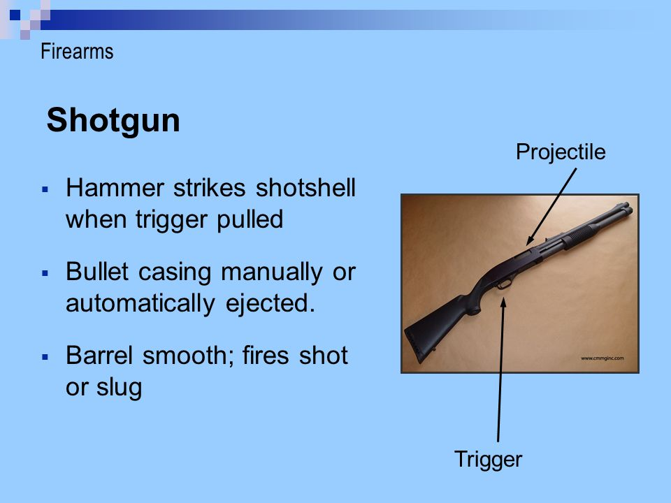 Shotgun Hammer strikes shotshell when trigger pulled