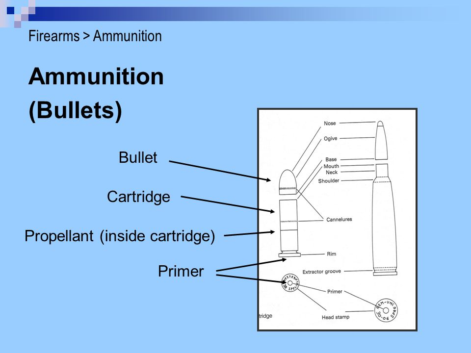 Ammunition (Bullets) Firearms > Ammunition Bullet Cartridge