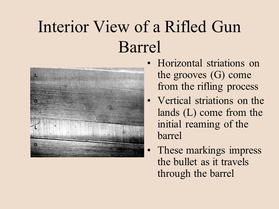 Interior View of a Rifled Gun Barrel