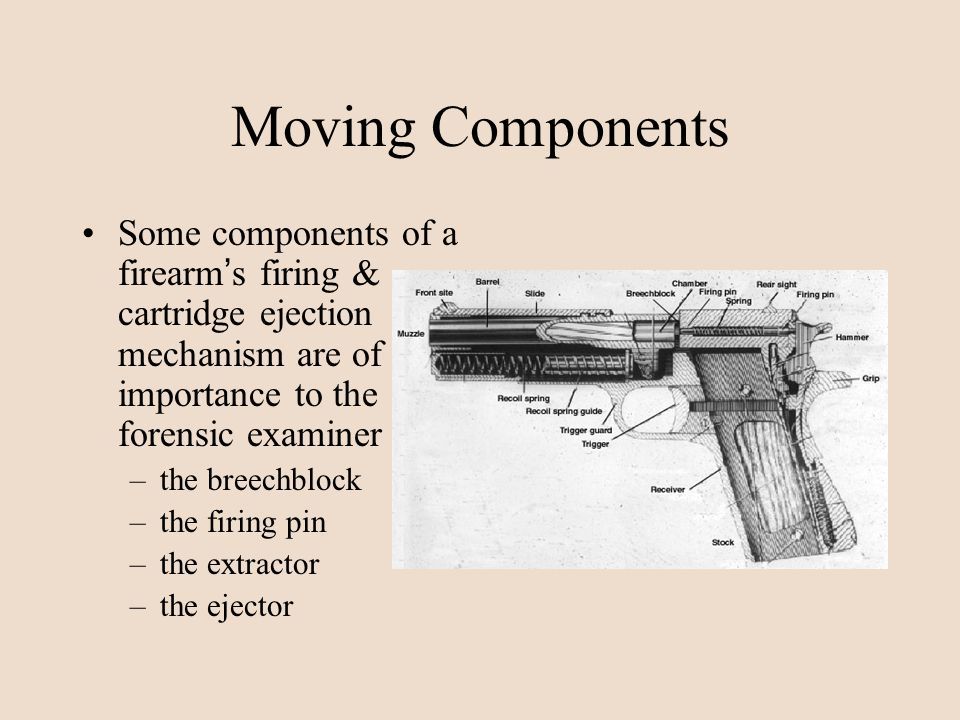 Moving Components Some components of a firearm's firing & cartridge ejection mechanism are of importance to the forensic examiner.