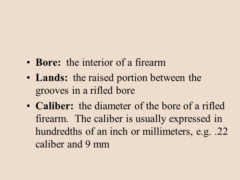 Bore: the interior of a firearm