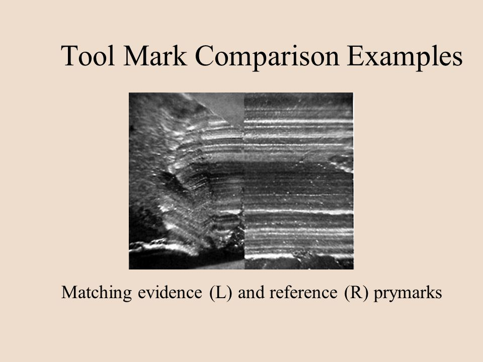 Tool Mark Comparison Examples