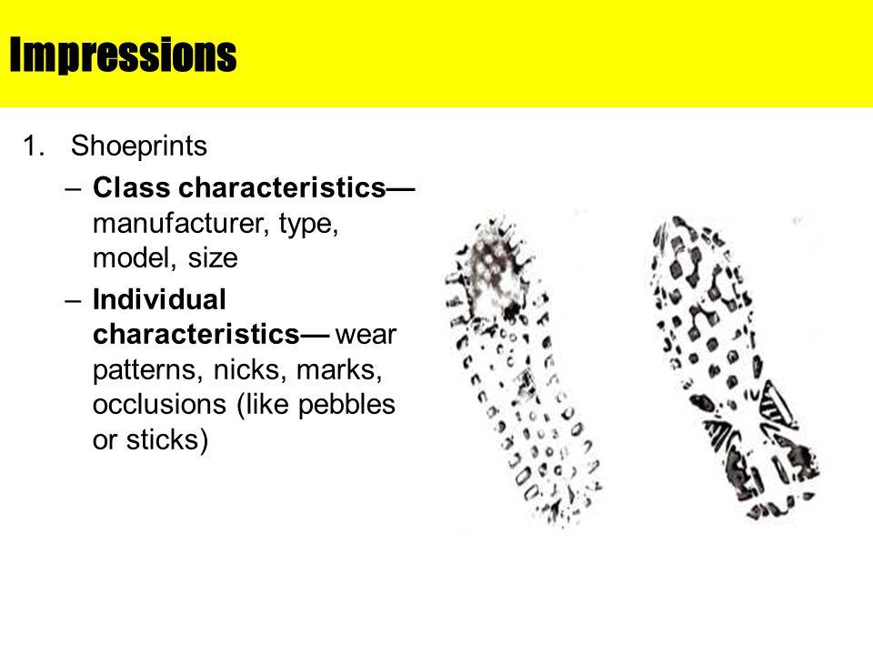 Impressions Shoeprints