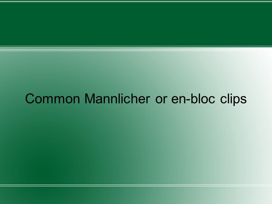 Common Mannlicher or en-bloc clips