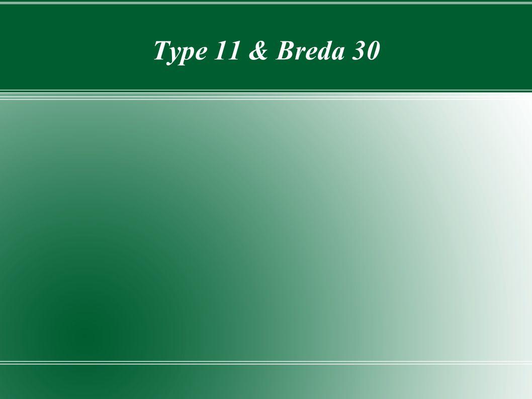 Type 11 & Breda 30