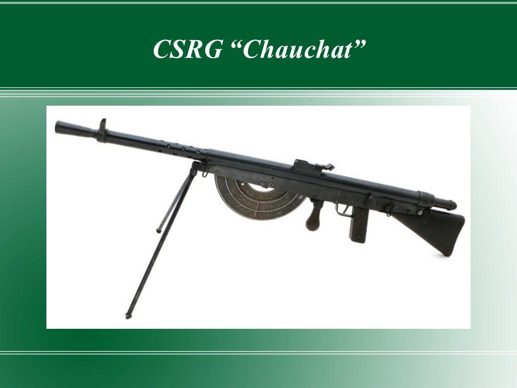 CSRG Chauchat