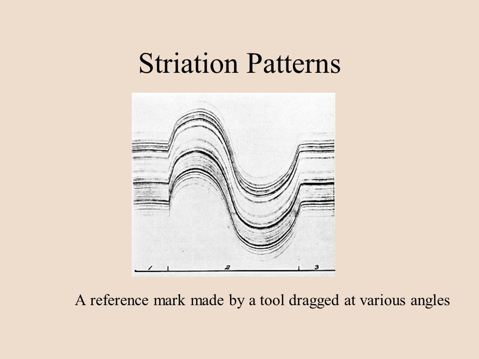 Striation Patterns A reference mark made by a tool dragged at various angles
