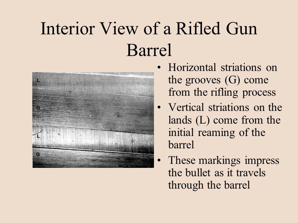 Interior View of a Rifled Gun Barrel