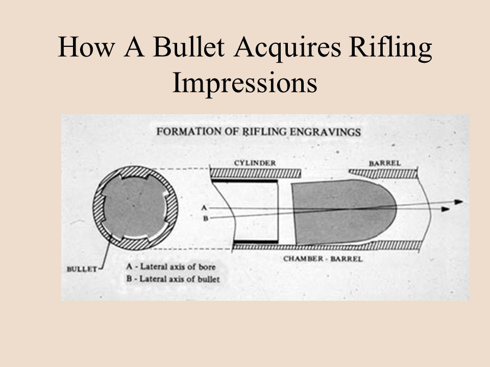 How A Bullet Acquires Rifling Impressions