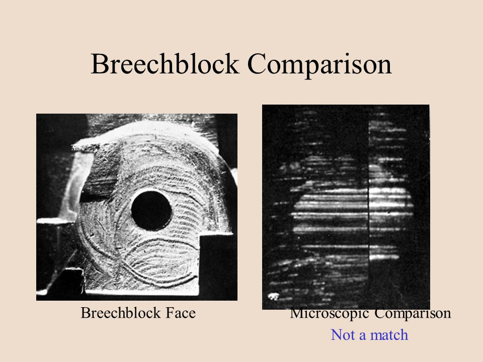 Breechblock Comparison