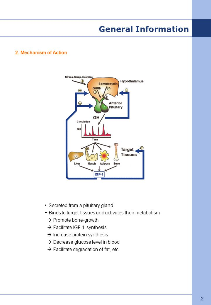 General Information 2. Mechanism of Action