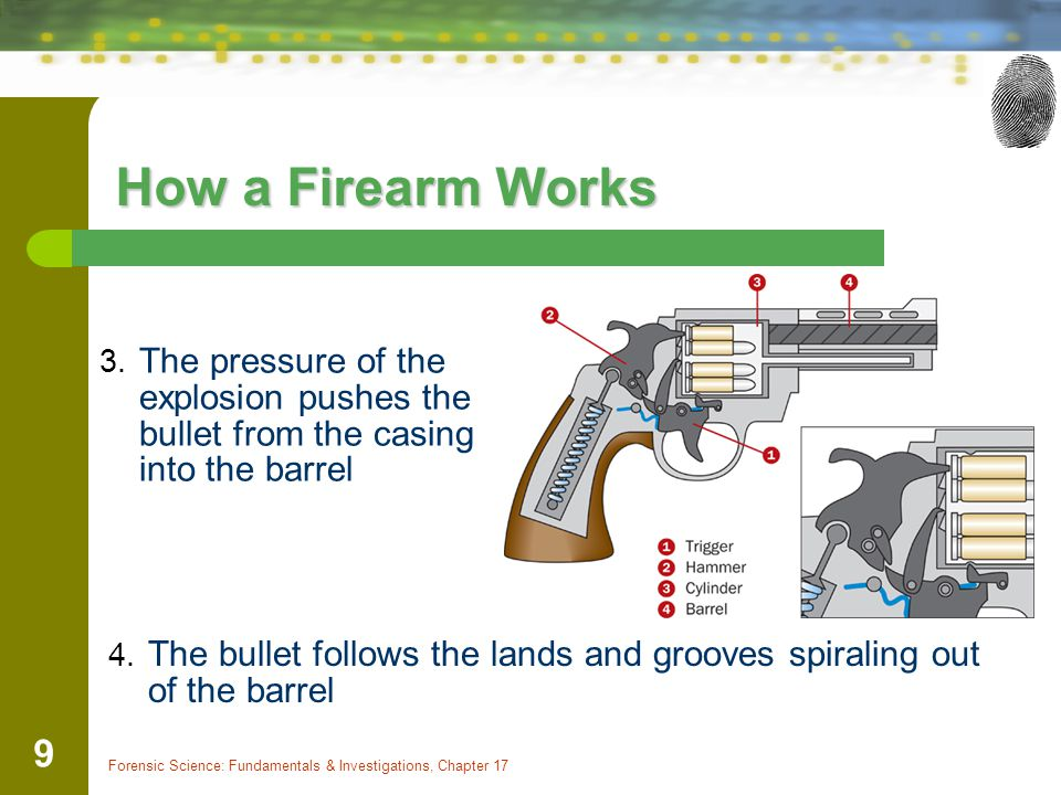 How a Firearm Works The pressure of the explosion pushes the bullet from the casing into the barrel.