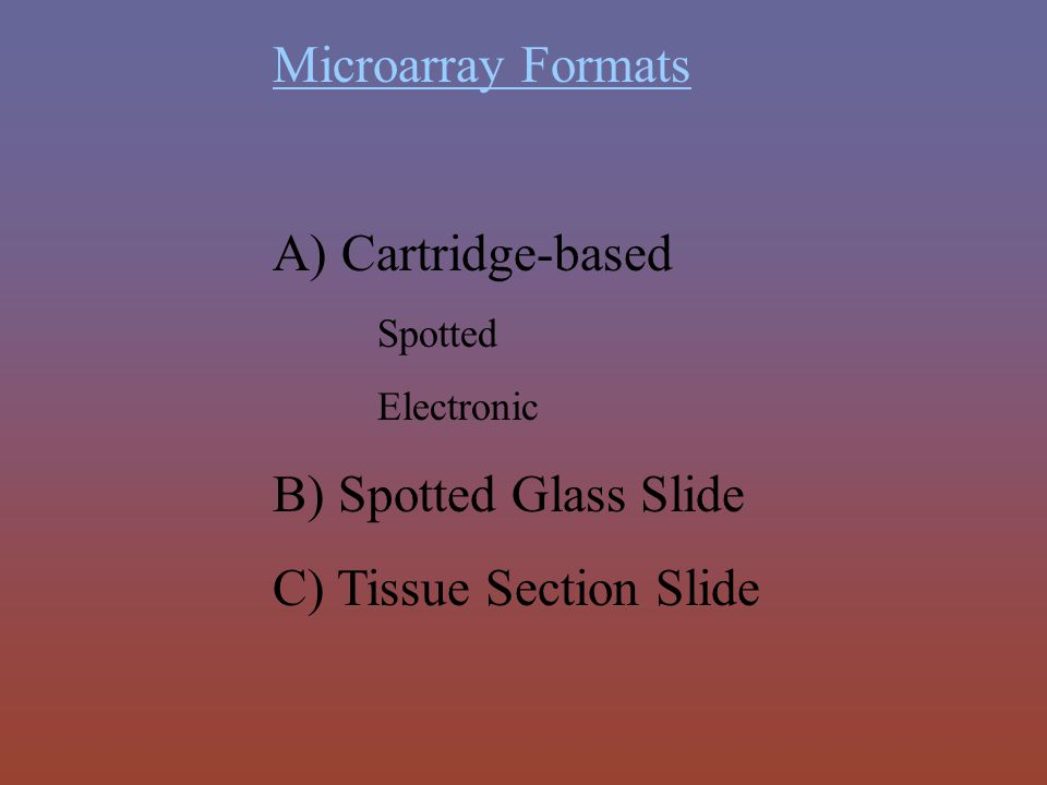 C) Tissue Section Slide