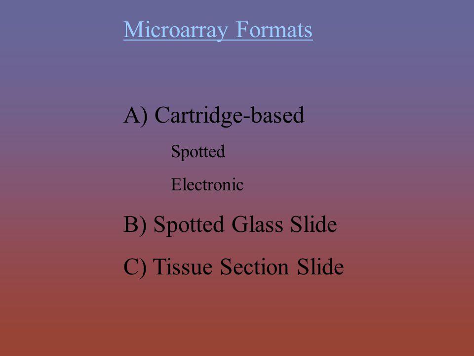 C) Tissue Section Slide