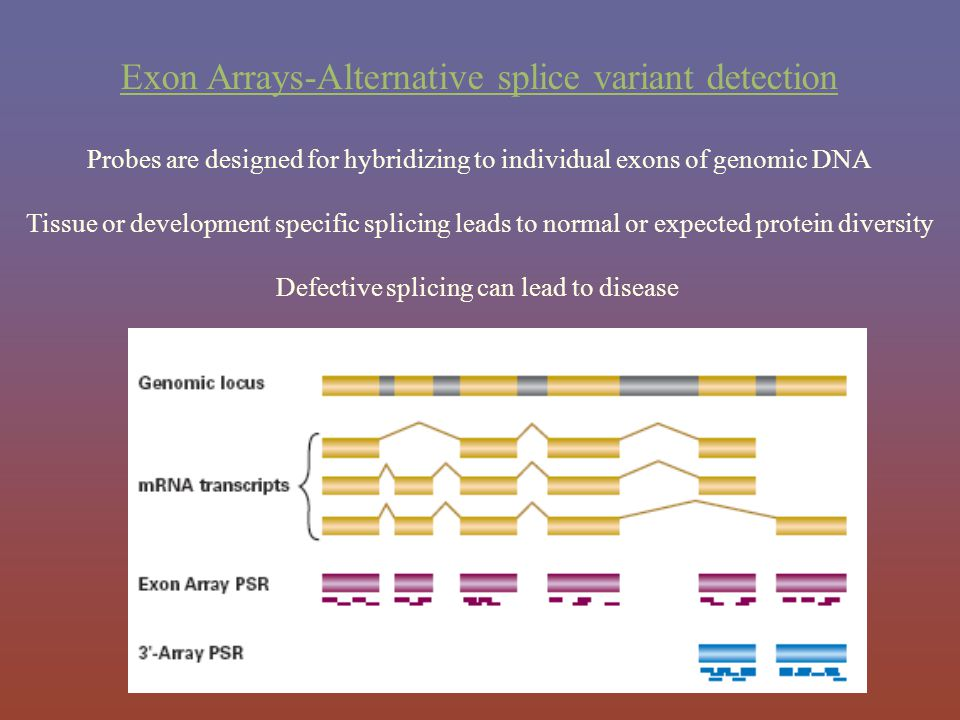 Exon Arrays-Alternative splice variant detection