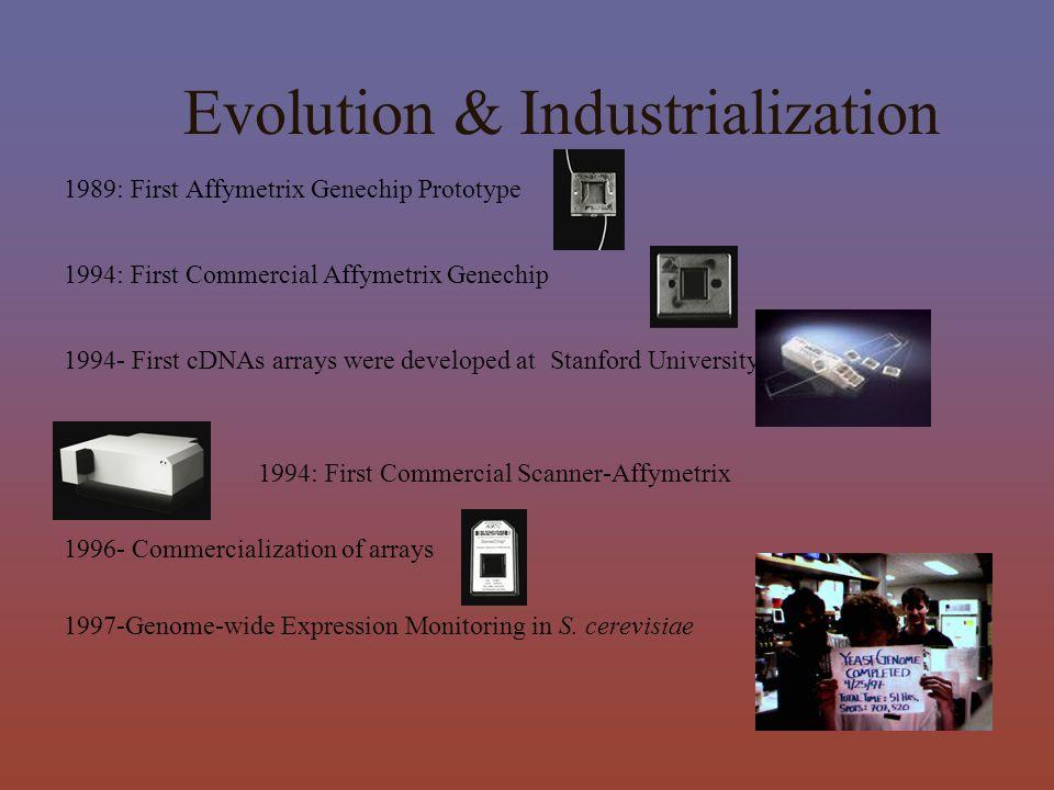 Evolution & Industrialization