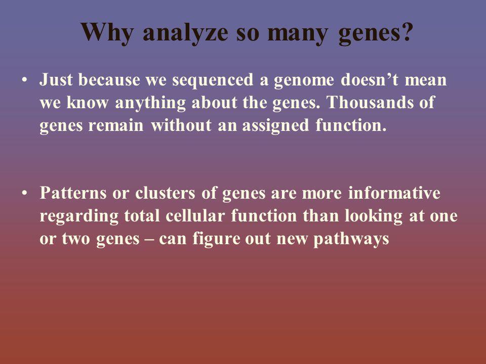 Why analyze so many genes