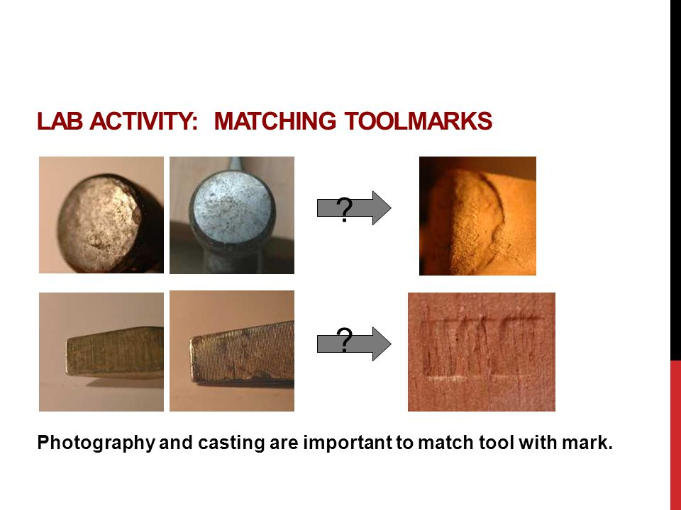 Lab Activity: Matching Toolmarks