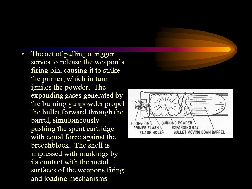 The act of pulling a trigger serves to release the weapon's firing pin, causing it to strike the primer, which in turn ignites the powder.