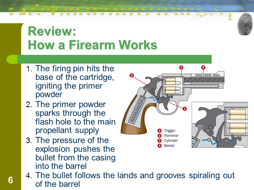 Review: How a Firearm Works