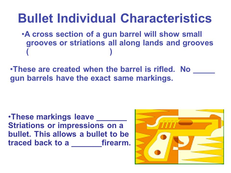 Bullet Individual Characteristics