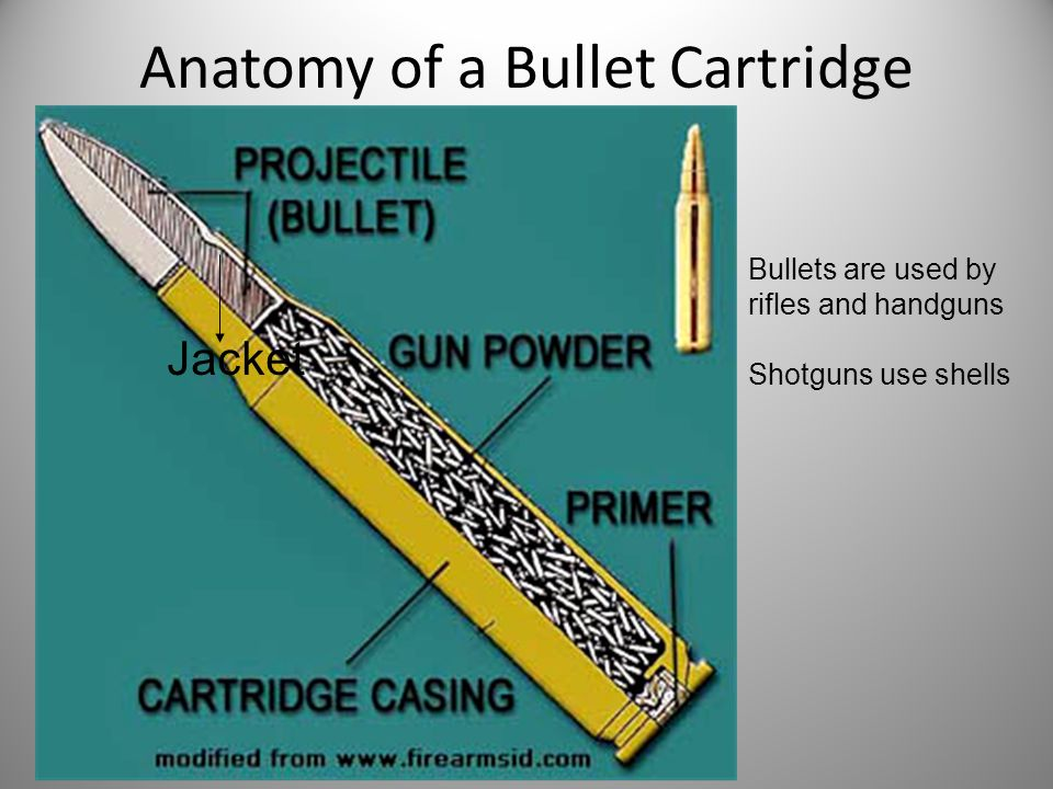 Anatomy of a Bullet Cartridge